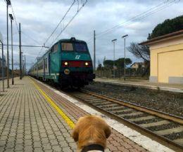 Foto: In treno da Fara Sabina a Castiglion del Lago sul Trasimeno