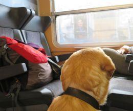Foto: In treno da Rieti a Sulmona