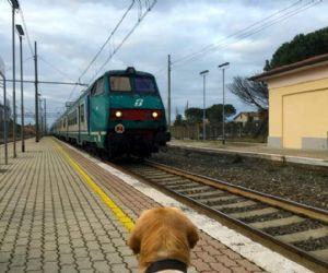 Locandina: In treno da Fara Sabina a Castiglion del Lago sul Trasimeno
