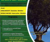 Locandina: Corso di potatura dell'ulivo livello intermedio