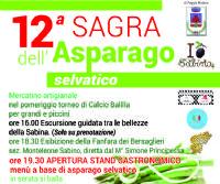 Locandina: 12° sagra dell'asparago selvatico