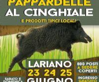 Locandina: Festa delle pappardelle al cinghiale
