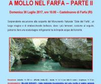 Locandina: A Mollo nel Farfa