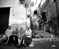 Locandina: Radici