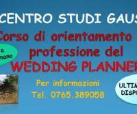 Locandina: Wedding Planner