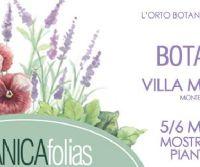 Locandina: BOTANICAfolias