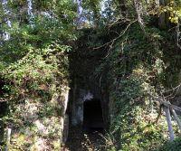 Locandina: Visite guidate tra natura e necropoli