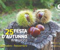 Locandina: Festa d'Autunno
