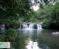 Locandina: Bosco, cascate e antiche leggende