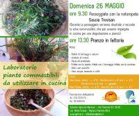 Locandina: Laboratorio piante commestibili + Pranzo in fattoria