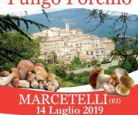 Locandina: La Festa del Fungo porcino