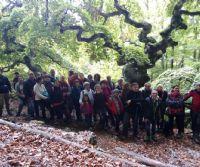 Locandina: Dal Faggio di San Francesco al trekking urbano a Rieti