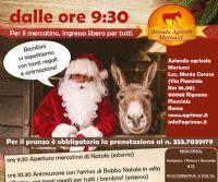 Locandina: Natale in Fattoria