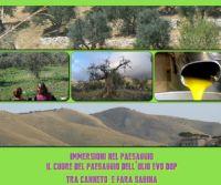 Locandina: Il cuore del Paesaggio dell'olio EVO DOP