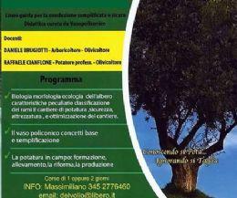 Locandina: Corso di potatura dell'ulivo