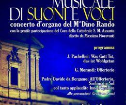 Locandina: Concerto d'organo