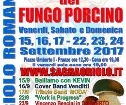 Locandina: Sagra del Fungo Porcino, XIV edizione