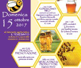 Locandina: Festa del miele e delle api