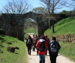 Locandina: Dalla necropoli della via Amerina alla città romana di Falerii Novi