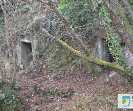 Locandina: Viaggio ai confini… dell'antica Narce 8