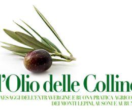 """Locandina: Latina: XIII Concorso provinciale """"L'Olio delle Colline"""""""