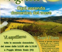 Locandina: SABINA AGRESTE