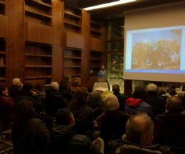 Locandina: Una visita narrata delle sale del Museo