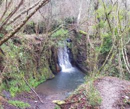 Locandina: Parco di Veio: le cascate, la mola, le poesie