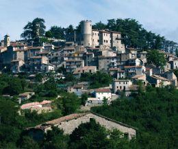 Locandina: Piccoli ciuchini con le mani in pasta…