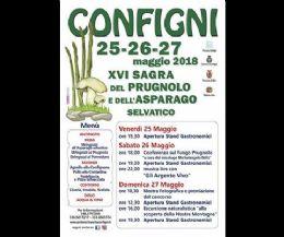 Locandina: Sagra del Prugnolo e dell'Asparago Selvatico