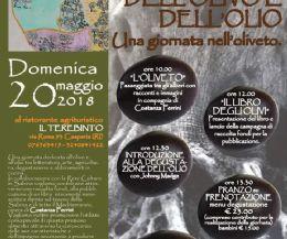 Locandina: Storia e Storie dell'olivo e dell'olio