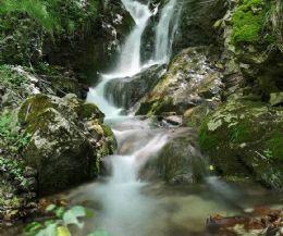 Locandina: Escursione al Faggio di San Francesco e alle cascate mistiche