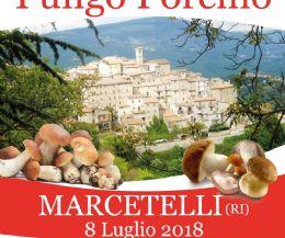 Locandina: Il porcino, principe dell'estate di Marcetelli