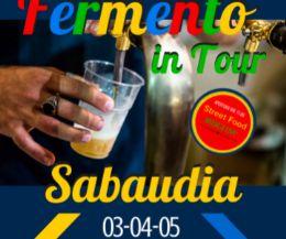 Locandina: Fermento in Tour