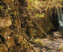 Locandina: Magliano Romano: le cascate, la mola, le poesie