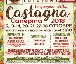 """Locandina: XXXVII edizione delle """"Giornate della Castagna"""""""