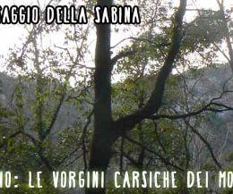 Locandina: Roccantica Catino. Le voragini carsiche dei monti sabini