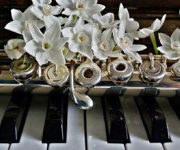 Locandina: Il Flauto cantabile