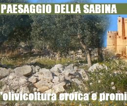 Locandina: Escursione nel paesaggio olivicolo aspro e pietroso intorno a Nerola