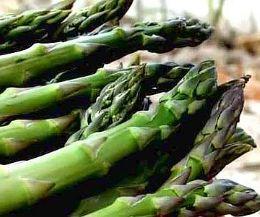 """Locandina: Canino celebra il """"mangiatutto"""", l'asparago verde vanto del territorio"""