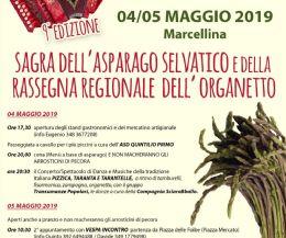 Locandina: 9^ Edizione della Sagra dell'Asparago Selvatico e della Rassegna Regionale dell'Organetto