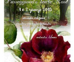 Locandina: Passeggiando tra le Rose
