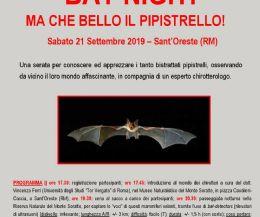 Locandina: Bat Night. Ma che bello il pipistrello
