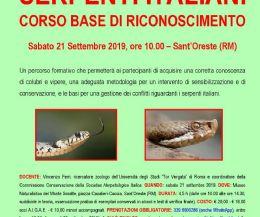 Locandina: Serpenti italiani: corso base di riconoscimento