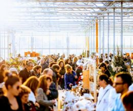 Locandina: Market in Serra