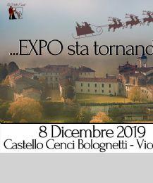 Locandina: Mercatini di Natale del Castello & EXPO, III Edizione