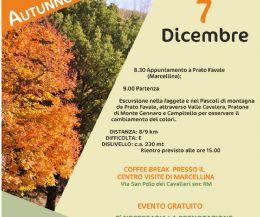 Locandina: Autunno e Foliage escursioni di autunno