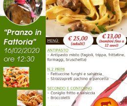 Locandina: Pranzo in fattoria e giro con l'asino!