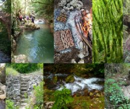 Locandina: Nella gola del Farfa (Monumento Naturale del Lazio) e la paronamica Ferratina