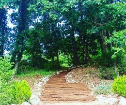 Locandina: Adventure Trail all'interno del parco esperienziale per famiglie